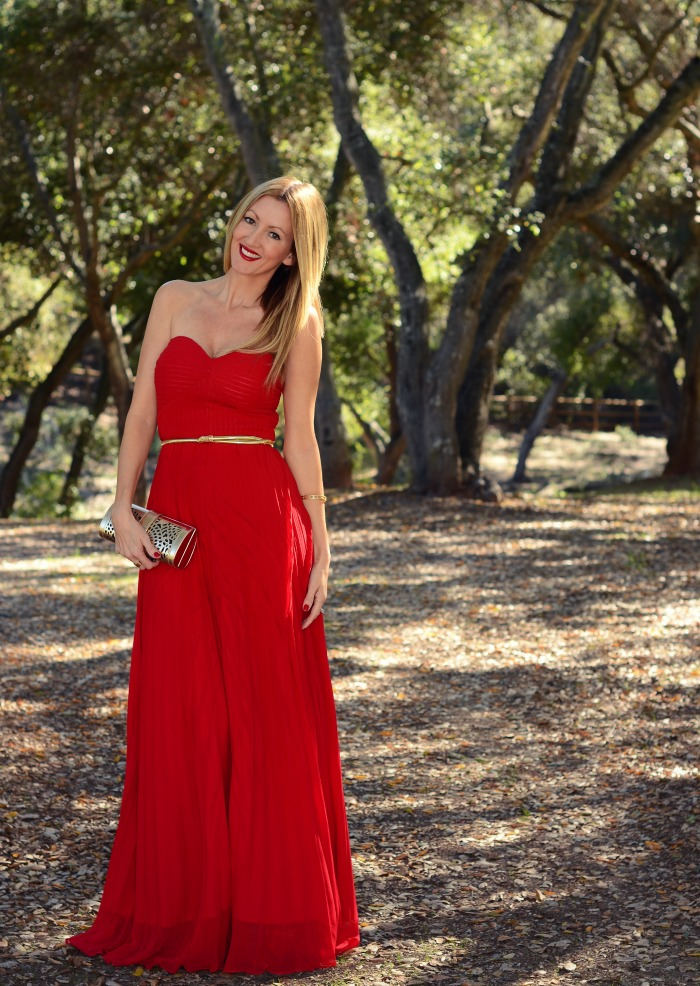 lulu's always charming maxi dress