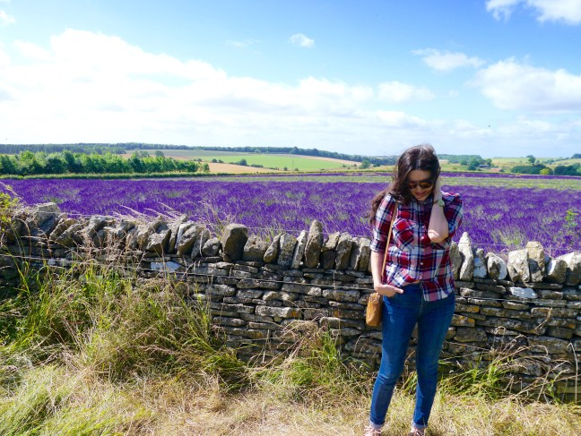 english-countryside-snowshill-lavender-fields