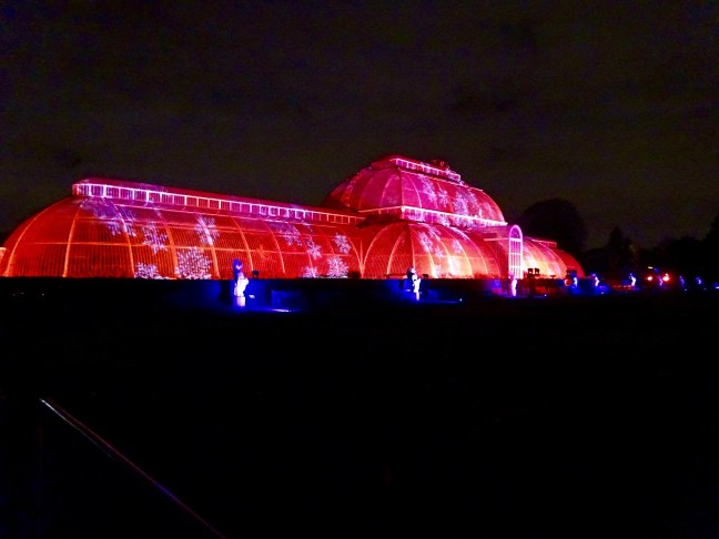 london-christmas-experiences-kew-gardens