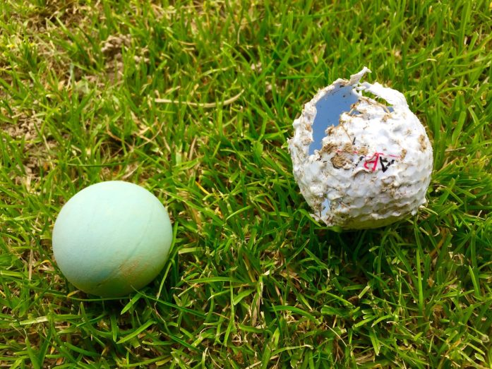 Broken Golf Ball