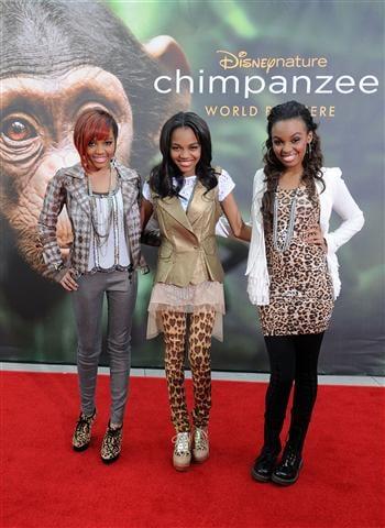 McCain Sisters Chimpanzee Red Carpet