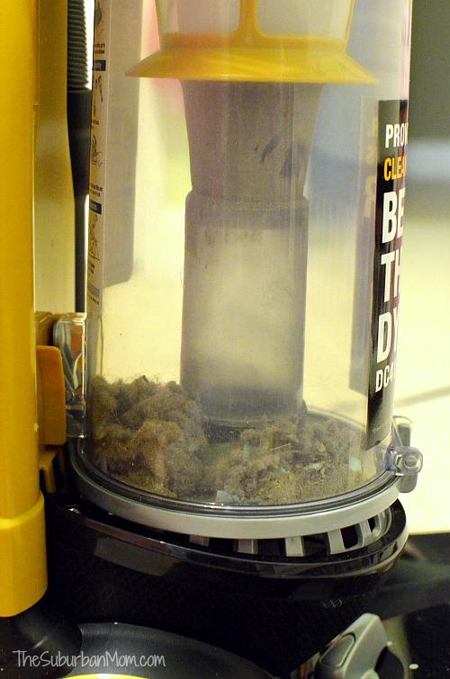 Eureka AirSpeed All Floors Vacuum Dust Chamber
