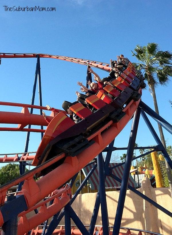 Busch Gardens Scorpion