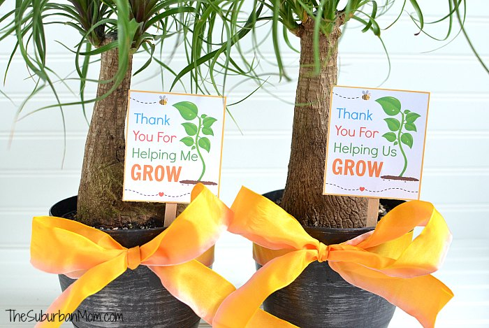 image relating to Thank You for Helping Me Grow Free Printable known as Thank Your self For Encouraging Me Mature Totally free Printable (Us Model Way too!)