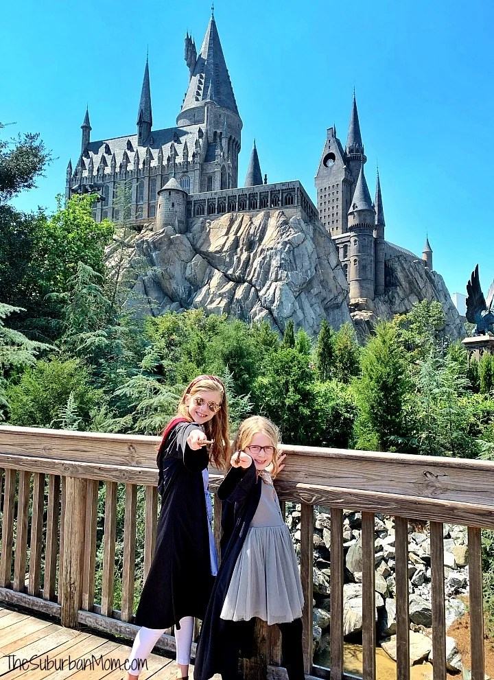 Early Admission Wizarding World Harry Potter
