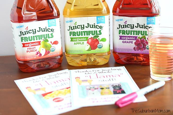Organic Juicy Juice Fruitifuls