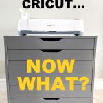 So You Got A Cricut Now What