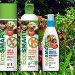 EcoSmart Natural Bug Killer – Giveaway