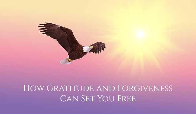 How Gratitude and Forgiveness Can Set You Free