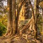 Temples of Angkor5