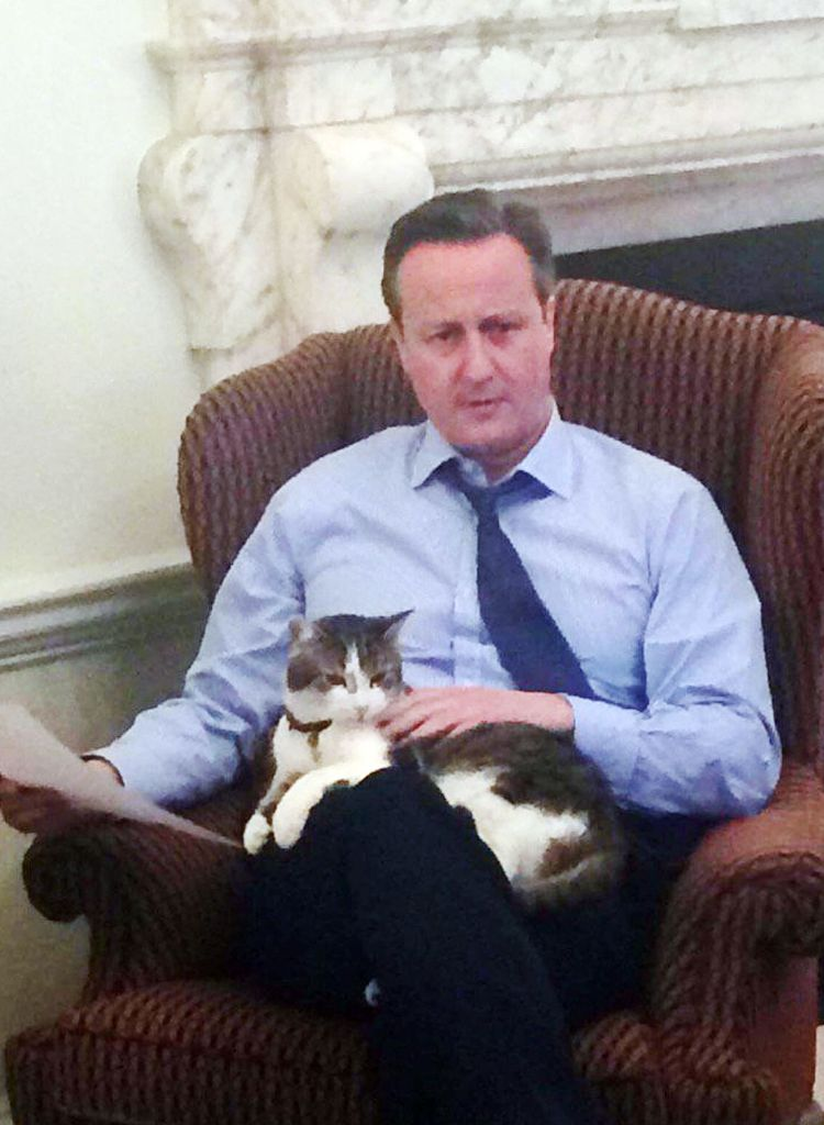 David Cameron admits he misses Larry after revealing his last act as PM was  taking a selfie with the No10 cat
