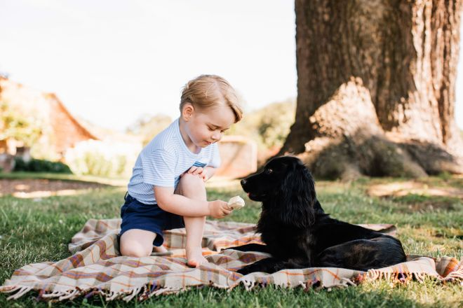The photos have been released to mark Prince George's third birthday