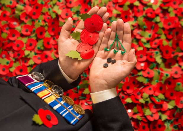 You can donate to the Poppy Appeal via phone, text, post or online