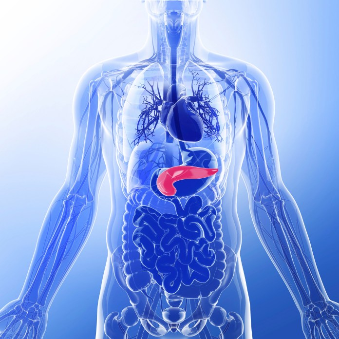 Insulin is a hormone typically produced by the pancreas and allows glucose to enter the cells in the body, where it's used for energy