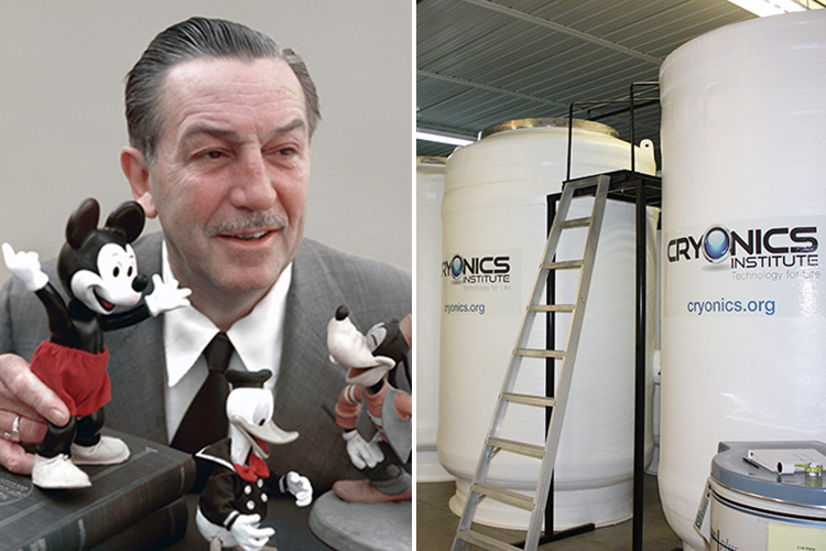 Was Walt Disney S Body Really Cryogenically Frozen After He Died In