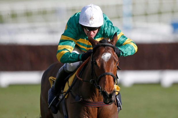 Defi Du Seuil is a big absentee from the Cheltenham card