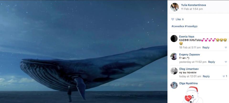 O que é desafio da baleia azul