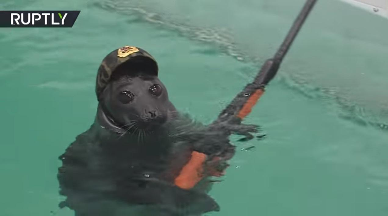 Bizarre footage of beretwearing Russian SEALS armed with
