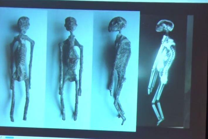 Five 1,700-year-old mummies, which allegedly look more reptilian than human, have been causing a stir with conspiracy theorists