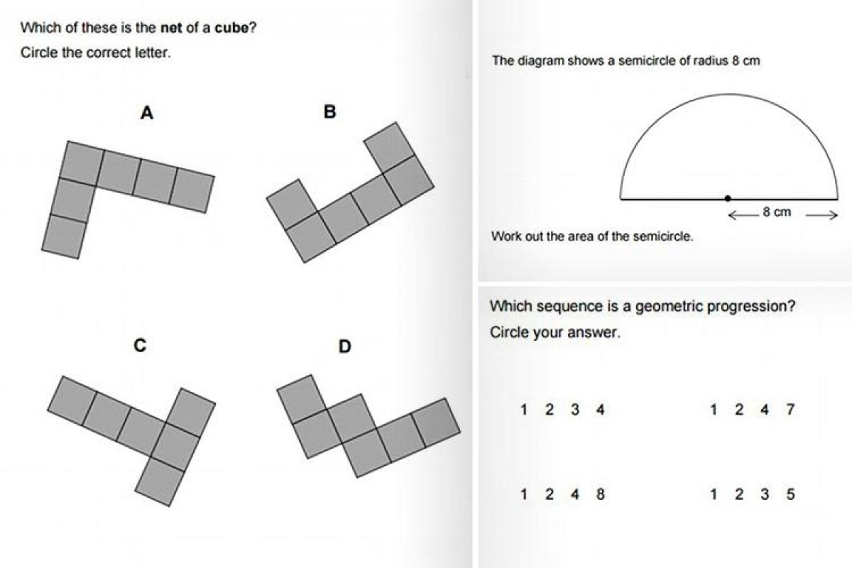 Could YOU pass GCSE maths? Test yourself with actual
