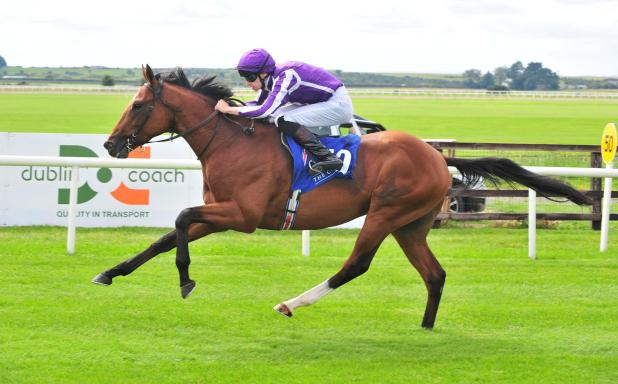 Saxon Warrior is favourite for the Racing Post Trophy