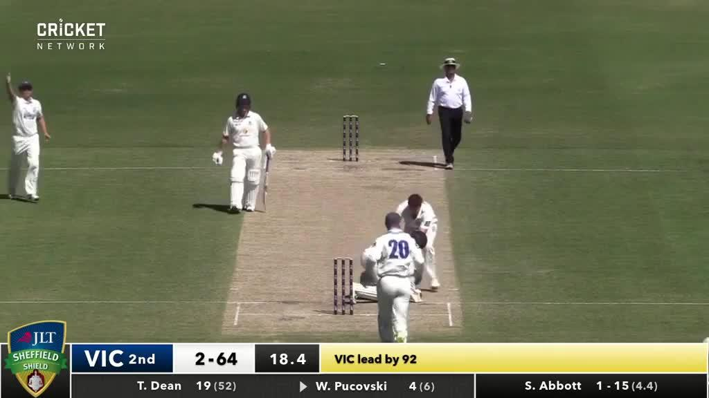 Sean Abbott rushed to the aid of Will Pucovski after the incident at the Junction Oval in Melbourne