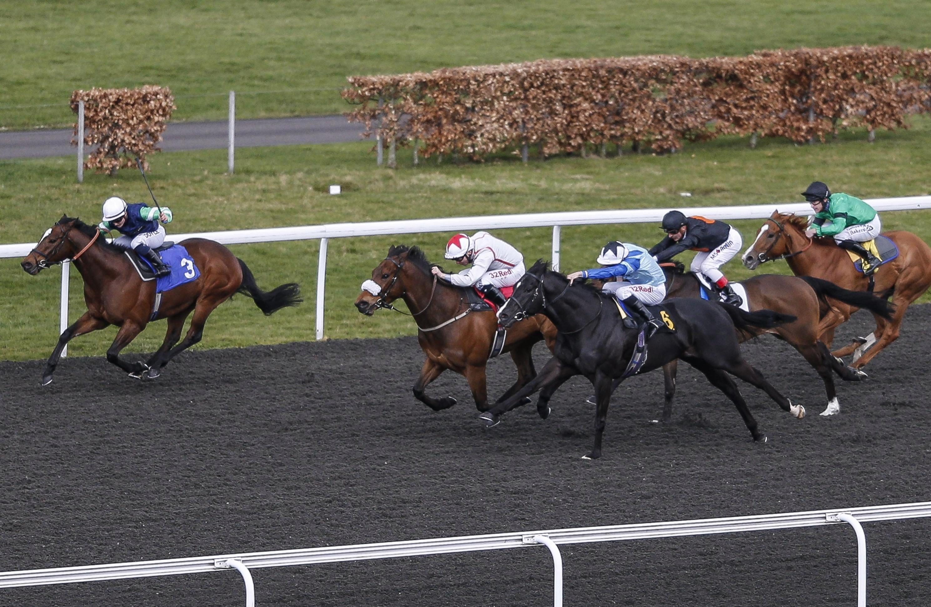 Tomily (far left) can back up his win here last time