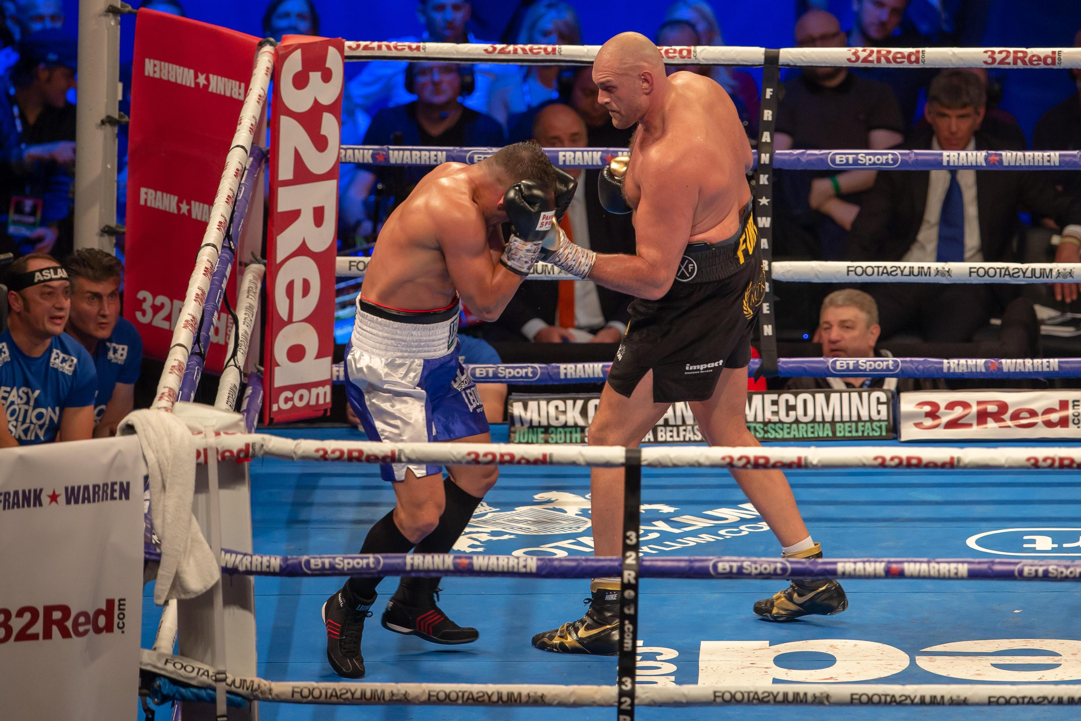 Fury ended his two-and-a-half year hiatus from boxing with a stoppage win against Sefer Seferi