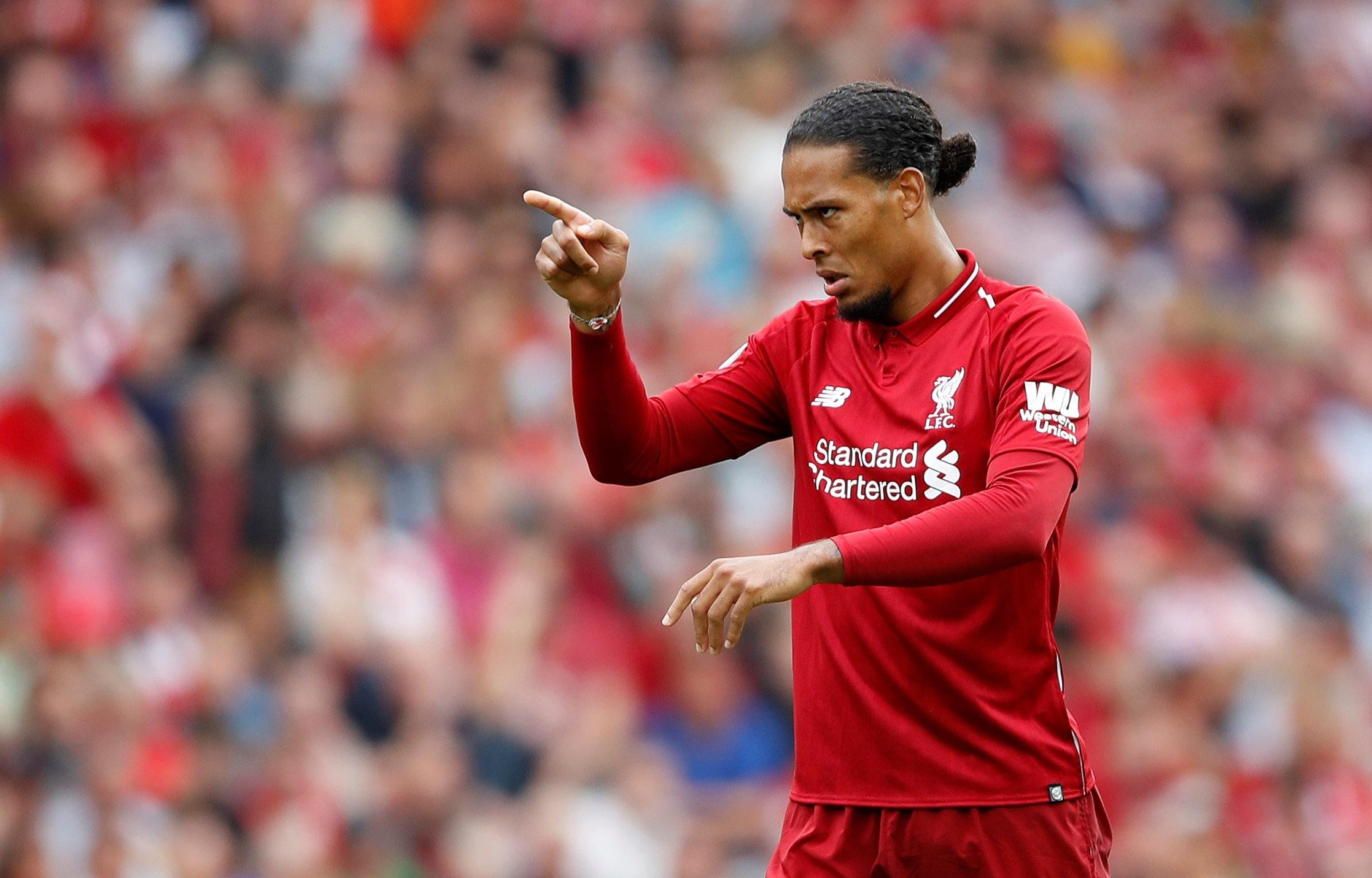 Virgil van Dijk had a comfortable afternoon in his first full season at Liverpool