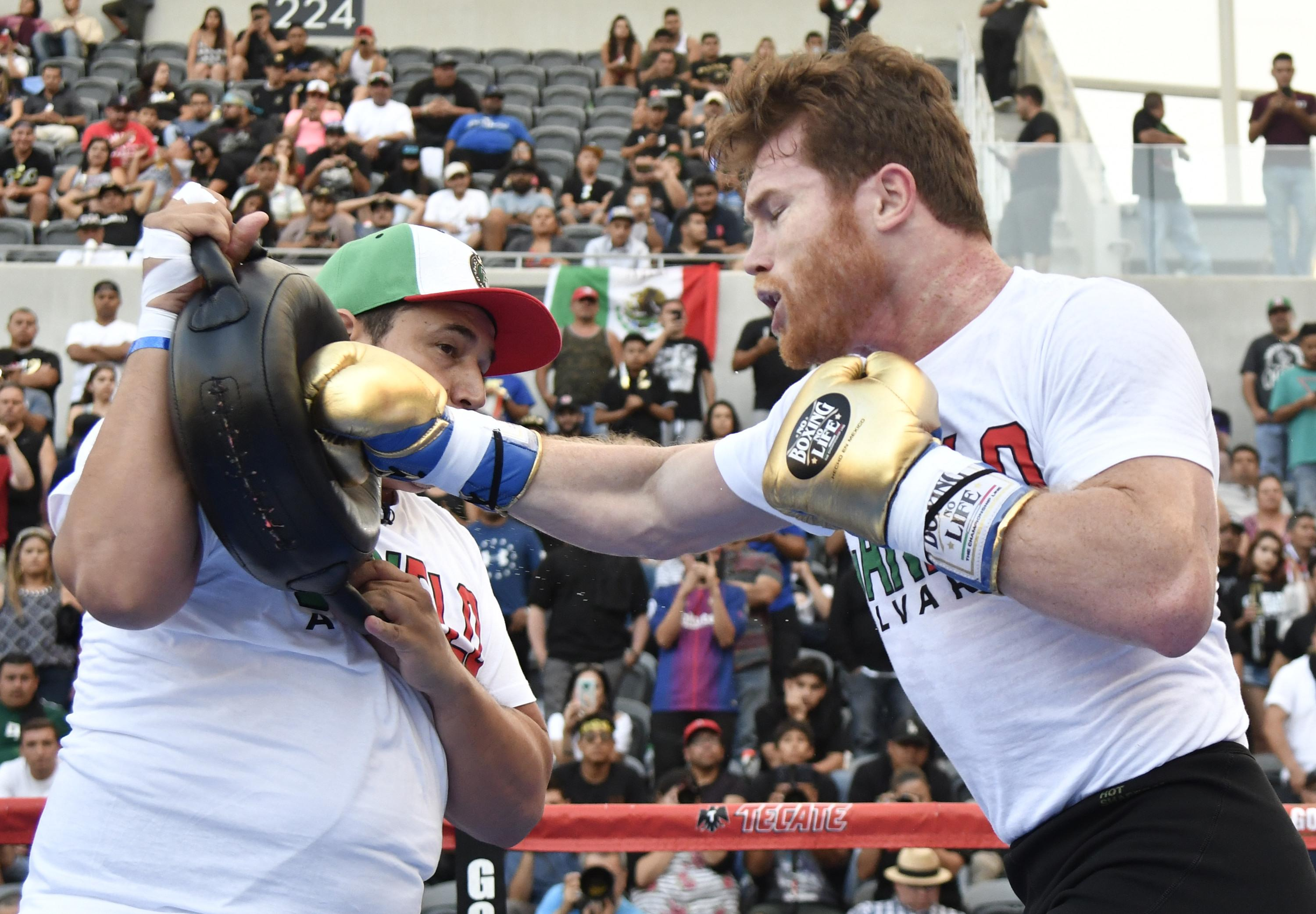 The fighters are set to go toe-to-toe again on September 15