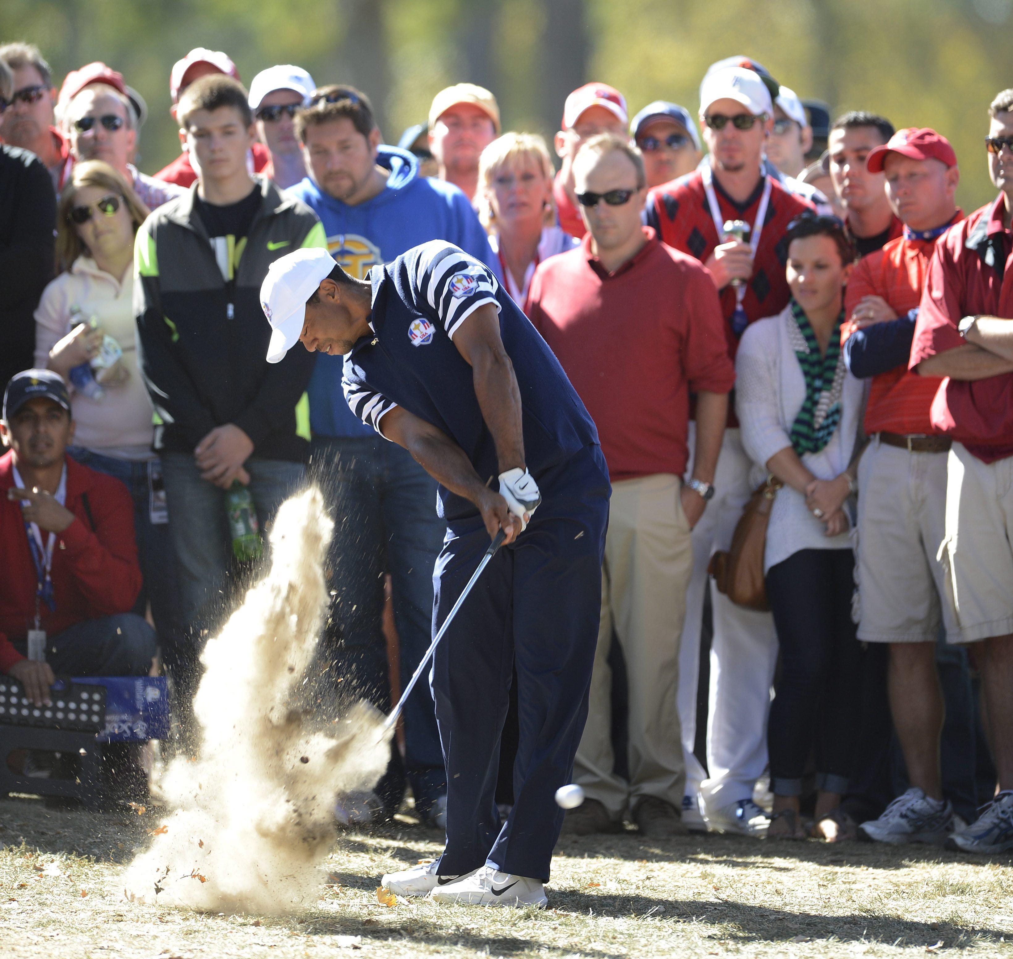 Tiger Woods is a typically wild driver of the ball but makes lots of birdies, suggesting he is better suited to fourballs