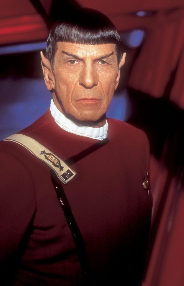 The new pet in the life of Cristiano Ronaldo and Georgina Rodriguez arguably has a touch of Mr Spock about it