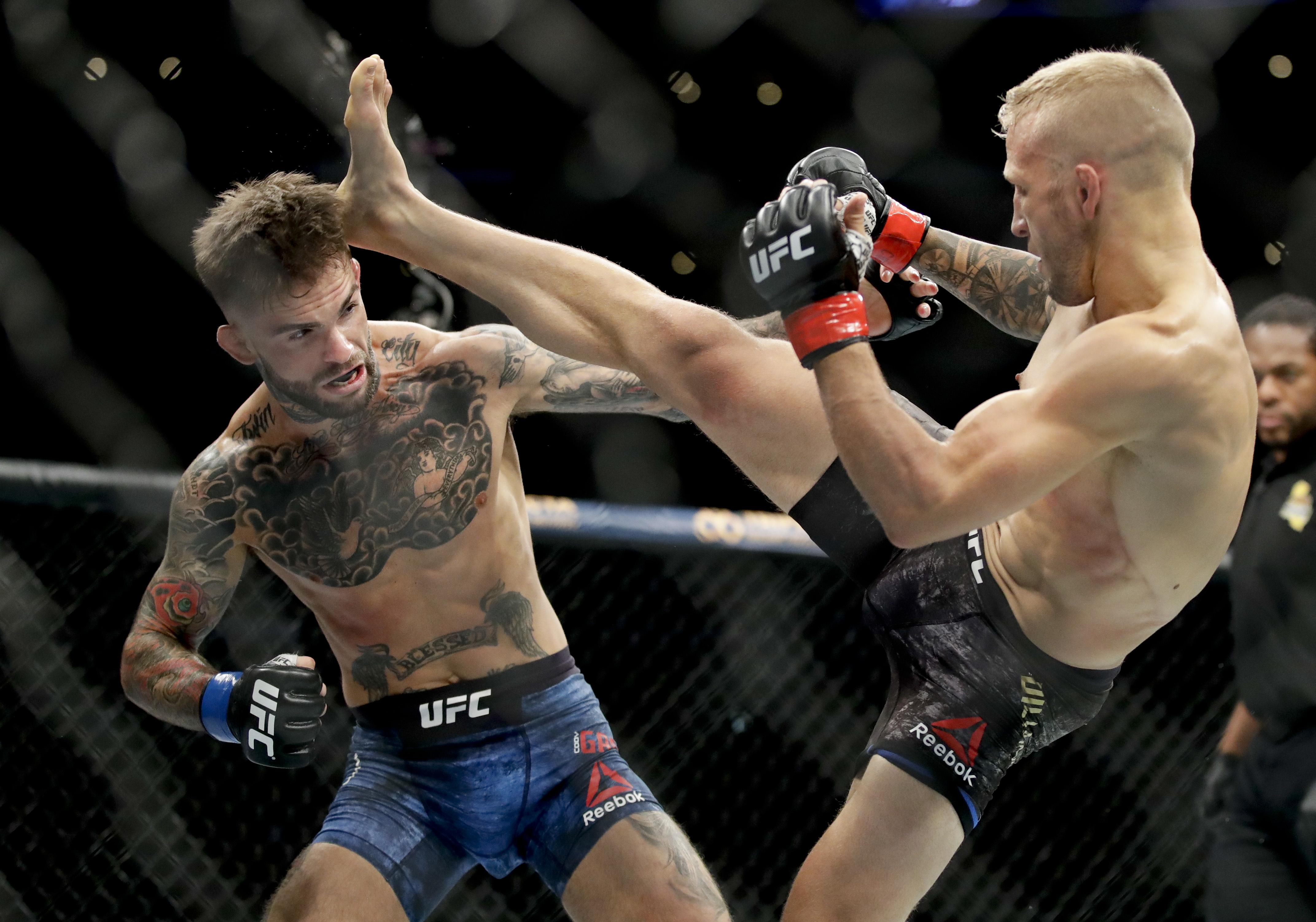 Dillashaw beat arch rival Garbrandt twice - both by knockout as he reigns champion at 145lbs