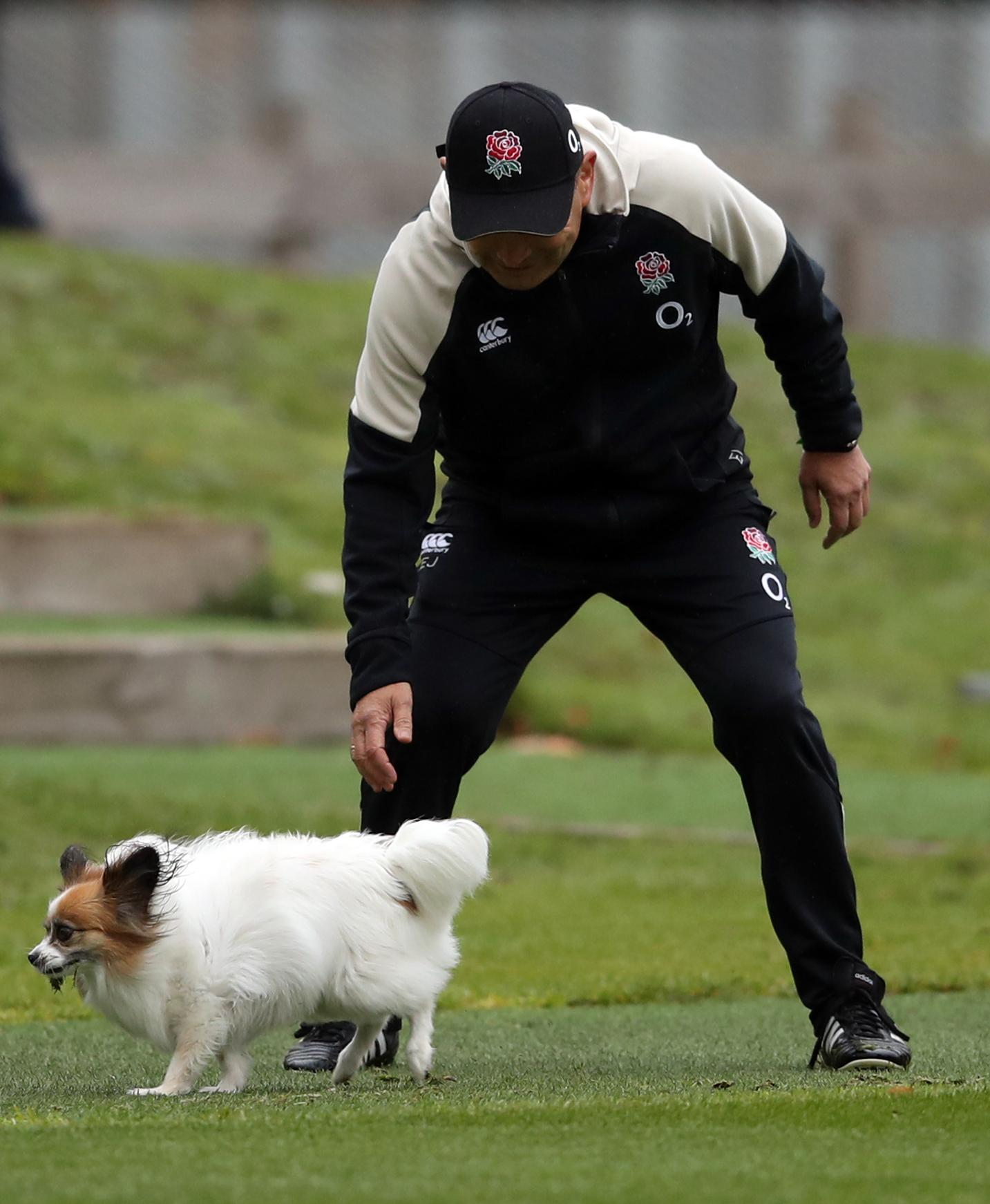 Jones chasing his dog Annie - and he wants a performance worthy of a film script against the world champions