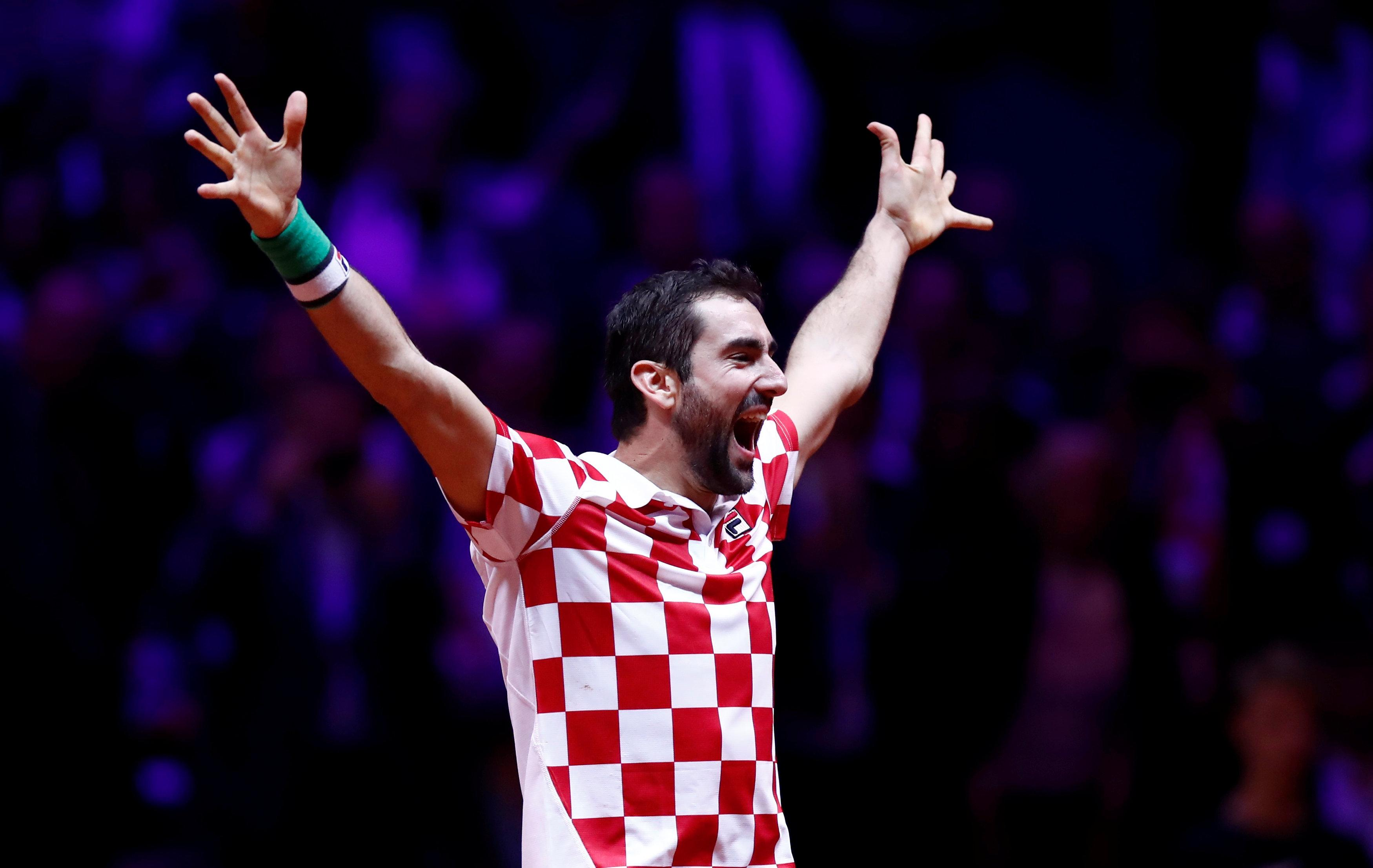 Marin Cilic celebrated wildly as he led Croatia to Davis Cup glory without dropping a set