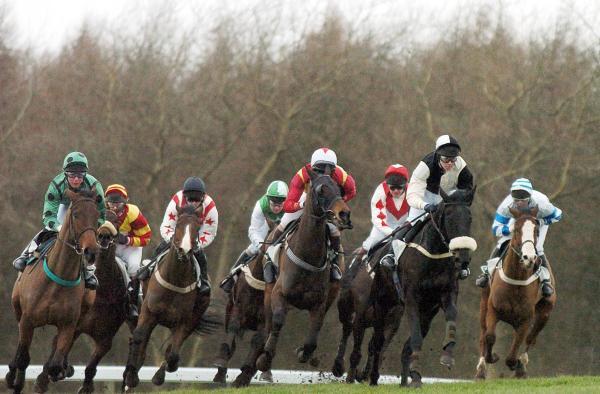 Templegate Racing Tips Sedgefield Exeter Sandown And - Year