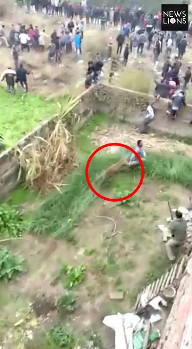 The beast rampaged around the Indian village causing dozens of locals to flee