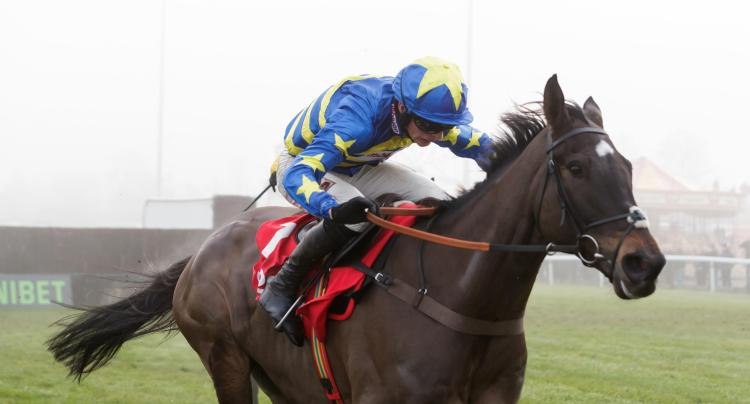 Dynamite Dollars has been ruled out for the season by trainer Paul Nicholls