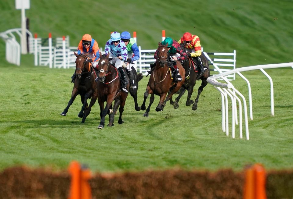 The Cheltenham Festival brings the best racehorses to one incredible week of racing