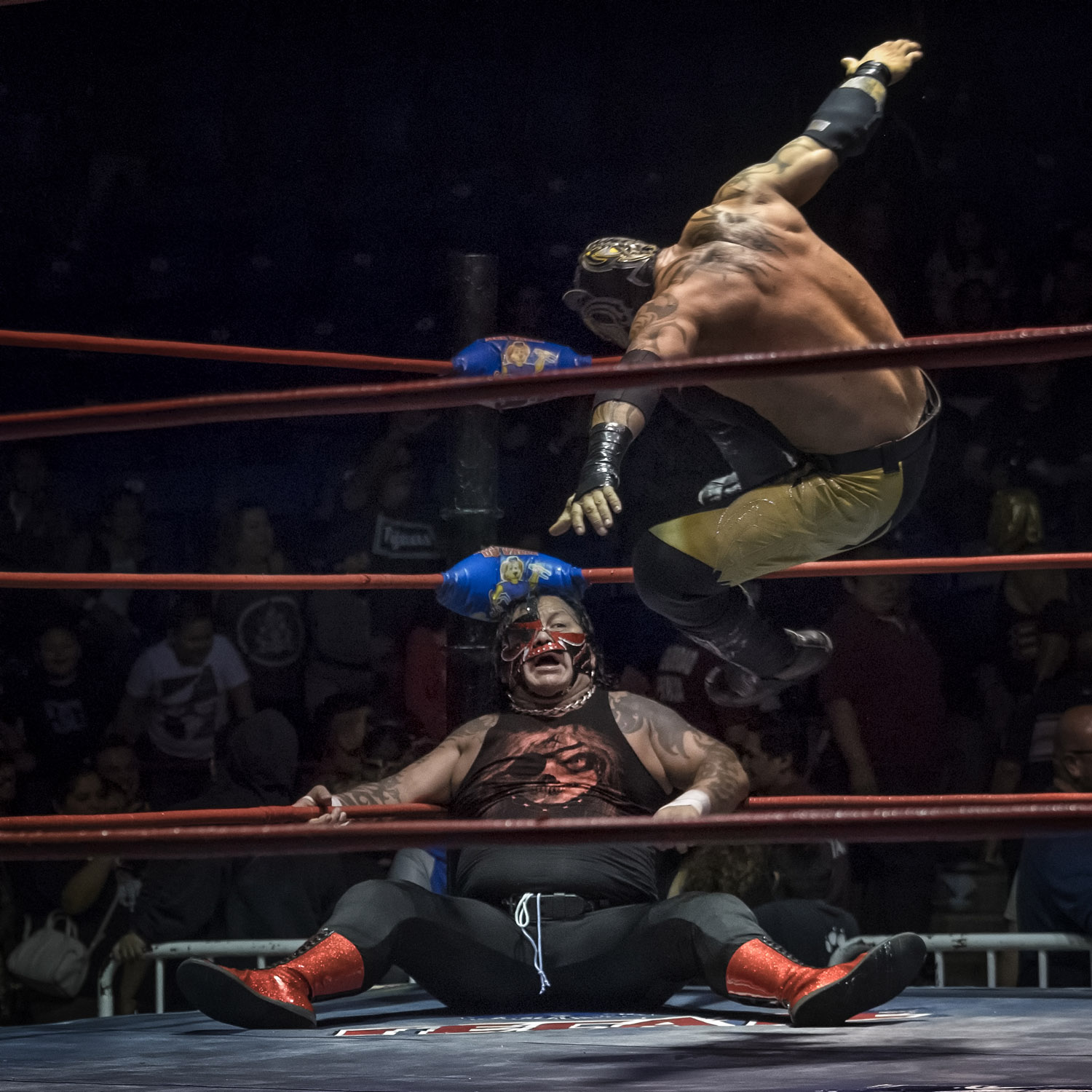 Image result for lucha libre