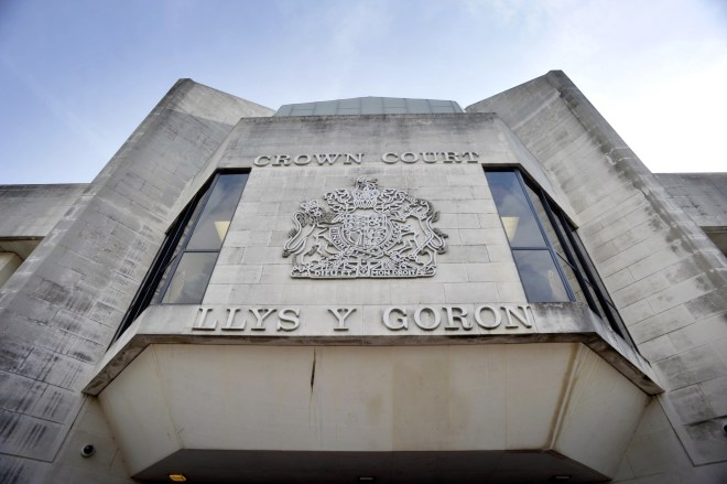 The mother was jailed for two years and four months at Swansea Crown Court but has since had her sentence reduced