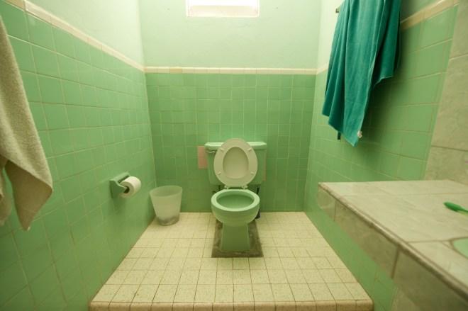 Avocado bathrooms were also an unpopular choice