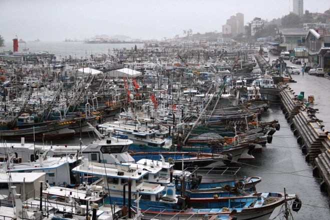 Fishing boats docked at a port in Yeosu, South Korea ahead of the storm's arrival