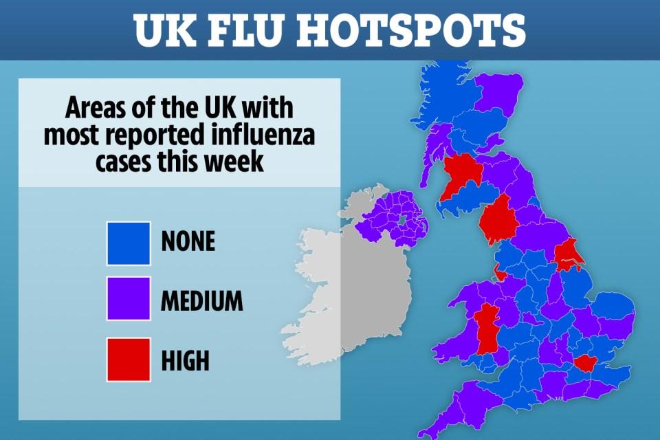 UK flu hotspots revealed as health bosses warn virus has hit early ...
