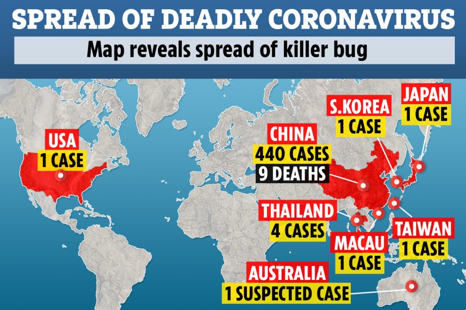 Killer coronavirus could have come from BATS – like SARS and Ebola ...