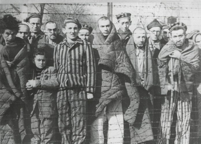 Most of the victims had been living ordinary lives before the war only to find themselves in Auschwitz