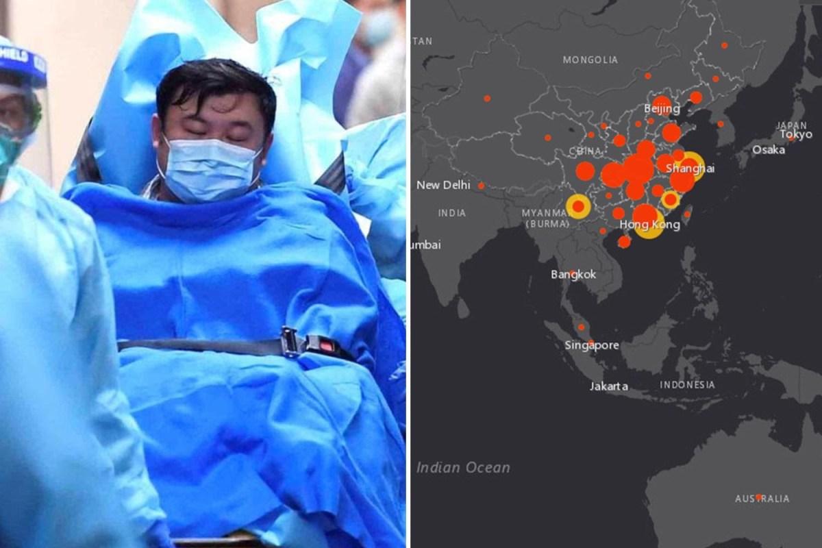 Coronavirus heat map: Interactive website shows terrifying ...