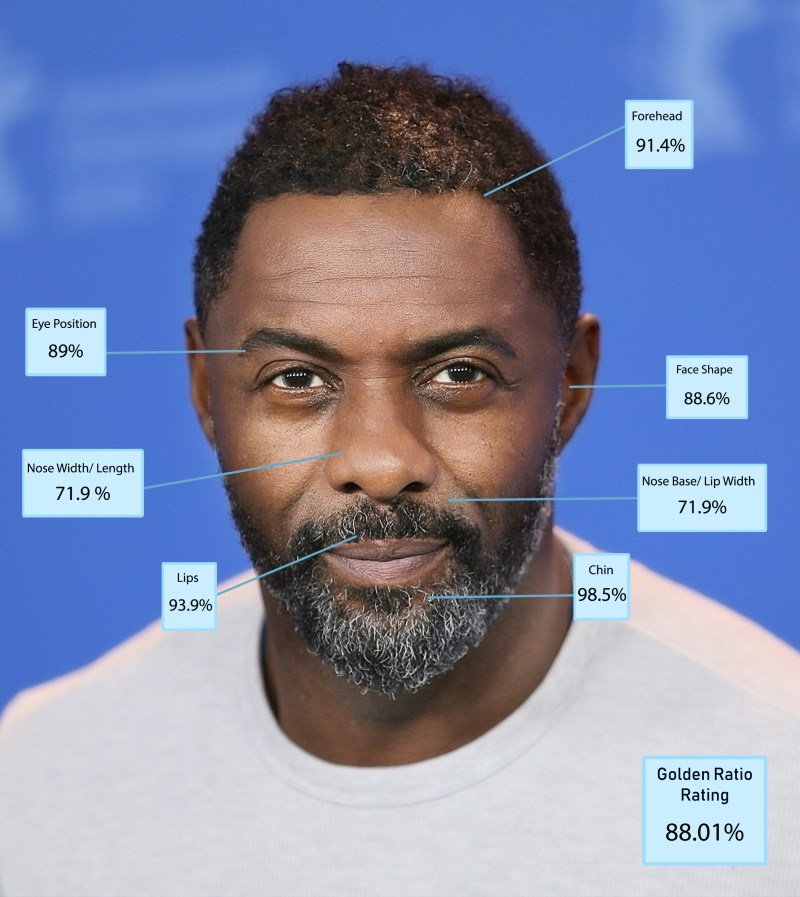 Idris Elba came in eighth with a score of 88.01 per cent