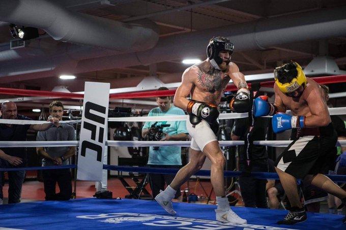 UFC President Dana White, far left, says Malignaggi was dominated in spars
