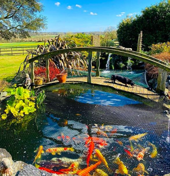 Michelle's home features a stunning bridge in the garden for walking over, feeding the fish and incredible Instagram snaps